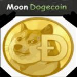 картинка сайта moondoge.co.in